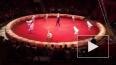 В цирке на Фонтанке обнаружили очередные нарушения