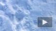 Синоптики пообещали петербуржцам долгожданное потепление