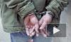 Чехия выдала России чрезвычайно опасного международного преступника