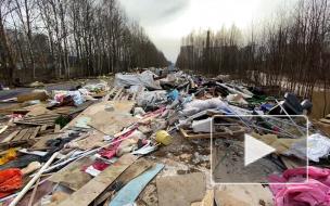 Жители Невского района жалуются на огромную свалку с химическими отходами