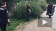 Видео из Чехии: Полиция 8 часов бегала за сбежавшими ...