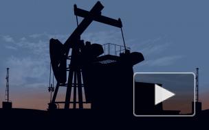 Россия и Белоруссия приостановили переговоры по транзиту нефти