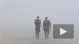 МЧС обещает 25 октября гололед и туман в Петербурге ...