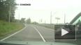 Видео: В Ленобласти водитель угрожал пистолетом другому ...