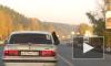 """Видео бурого медведя, который путешествует на пассажирском сидении """"Волги"""", взорвало Интернет"""