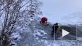 Видео: В Колорадо спасли оленя, который провалился ...