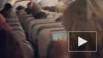На борту самолета, который летел в США из Пуэрто-Рико, ...