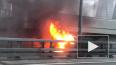 На дамбе по дороге в Кронштадт сгорела ГАЗель