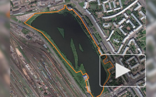 Сад в Невском районе благоустроят