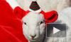 Россия погрязла в политической возне, а мир готовится к Рождеству
