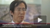 Nikken Sekkei приступила к детализации плана намыва