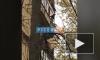 Осеннее обострение: Девушка устроила прогулку по балконам 7 этажа на улице Гастелло