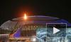 Петербуржцы высказались об Олимпиаде в Сочи