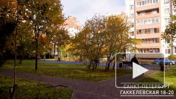 На Гаккелевской улице появилась новая детская и спортивная площадки