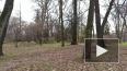 В Ботаническом саду записали звуки ожившей природы
