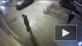 Действия вандалов на улице Маяковского попали на видео