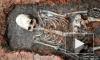 """Под Челябинском нашли скелет """"инопланетянина"""". Видео с раскопок вызвало бурную полемику"""