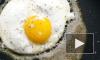 """Роскачество: """"Перед приготовлением нельзя мыть яйца, курицу и грибы"""