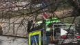 В Петербурге на улице Гастелло легковушка протаранила ...