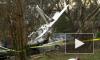 В США учебный самолет рухнул на автомобили, три человека пострадали