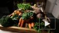 ФАС предотвратит рост цен на продукты на Дальнем Востоке
