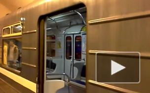 В петербургском метро толпа сломала двери «красного» поезда
