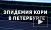 Главный санитарный врач Петербурга сообщил о росте числа больных корью