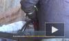 """Видео: в Выборге прошли работы по утилизации пассажирского теплохода """"Короленко"""""""