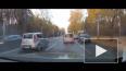 Видео: в Воронеже котенка спасли из-под колес автомобиле...