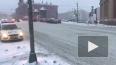 На Старопетергофском проспекте ПАЗ сбил пешехода: ...