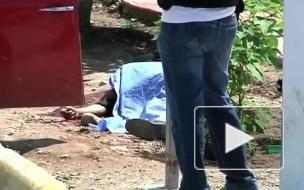 В Мексике расстреляли восьмерых таксистов-нелегалов