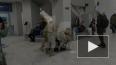 Появилось видео задержания террориста, финансировавшего ...