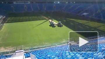 На Крестовском срезают газон
