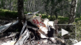 Пропавший легкомоторный самолет найден под Новосибирском, ...