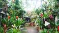 Ботанический сад продлит время работы 14 февраля