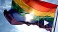 В США учителя уволили за гей-пропаганду и чтение гомо-са...