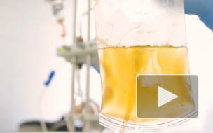 Переливание плазмы крови: насколько эффективно при коронавирусе?