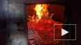 Ужасы из Кемеровской области: многодетная мать сожгла ...