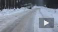 В Приморске произошло ДТП с участием рейсового автобуса