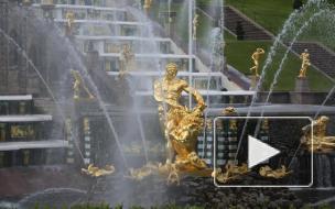 """ГМЗ """"Петергоф"""" открылся для посетителей. Туристы рады вернуться к фонтанам"""