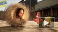 В сети появился трейлер нового фильма про Губку Боба. ...