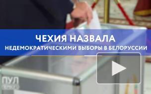 Чехия назвала недемократическими выборы в Белоруссии