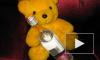 В Петербурге у интернет-зависимых детей нашли симптомы алкоголизма