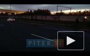 БМВ протаранил столб на Суздальском проспекте