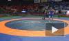 Появилось видео массовой драки на турнире по борьбе в Краснодаре