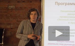 Активисты объединились, чтобы посчитать и сохранить деревья Петербурга