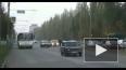 """ДТП в Брянске: """"кисочке"""" угрожают расправой, дело ..."""