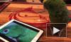 Забавное видео: попугай спел дуэтом с собой