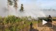 В Ленинградской области вертолет устранил тление в лесу