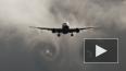 На месте крушения «Боинга 777» обнаружено 196 тел ...